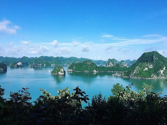 Halong Discovery: sails of indochina sailboats