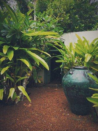 Cantaloupe House