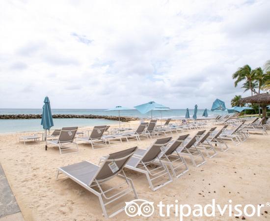 Beach at the Margaritaville Beach Resort Grand Cayman
