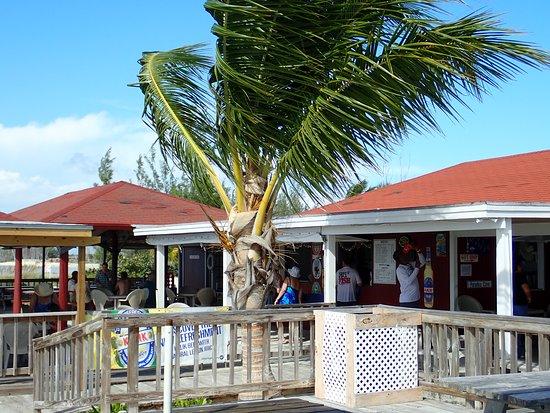 Paradise Cove Beach Resort, Hotels in Grand Bahama Island
