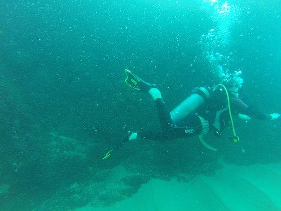Los Cabos, Mexico: Scuba diving