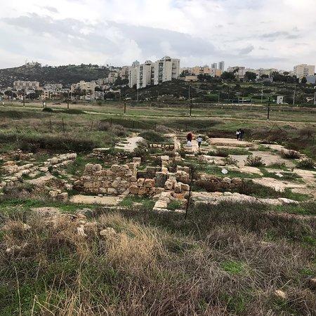 Tel Shikmona