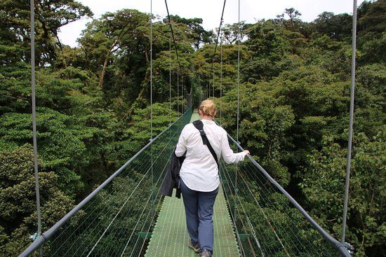 Hanging Bridges -Butterflies & Hummingbirds From Monteverde: My wife holding on for dear life