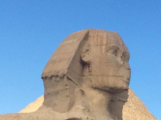Mr-Brown-Sugar-Egypt-Tours