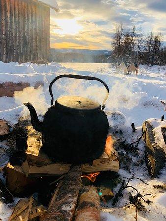 Skammestein, Norge: Coffee break in the woods.