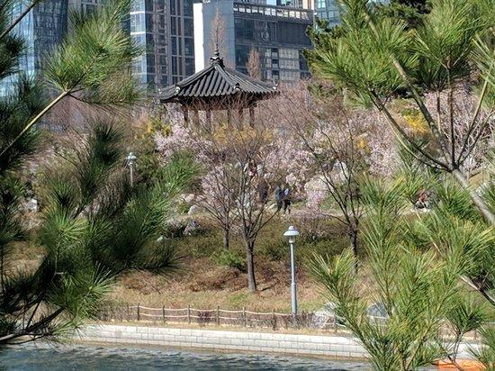 Songdo Central Park Photo