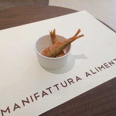 Manifattura Alimentare