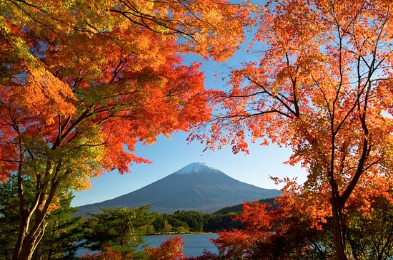 Tokio, Japón: Take a day trip to view Mt Fuji, stunning at all times of year.