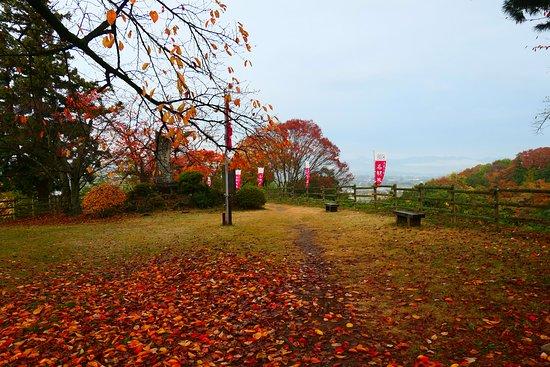 Nagurumi Castle Ruins: 本郭の様子。