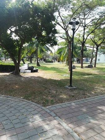 万年县公园