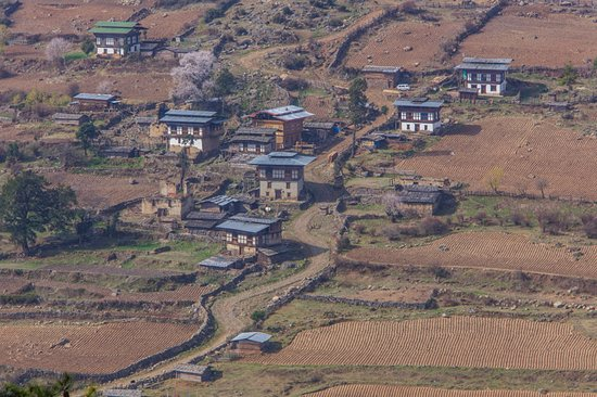 Bhutan Creative Tours: Photo take from one of our multi walking and hiking tours to remote places.