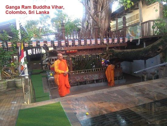 Colombo, Sri Lanka : Pay Homage to Bodhi Tree
