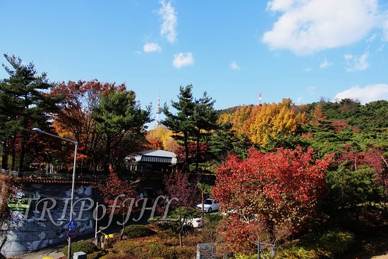 Namsan Outdoor Botanical Garden