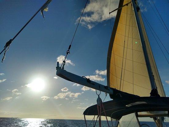 Afternoon sailing.