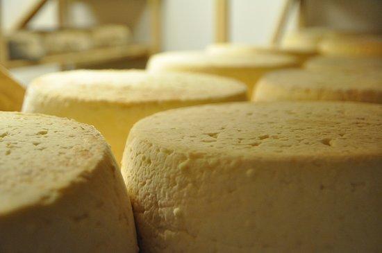 Agriculteur producteur & Fromager de lait bio