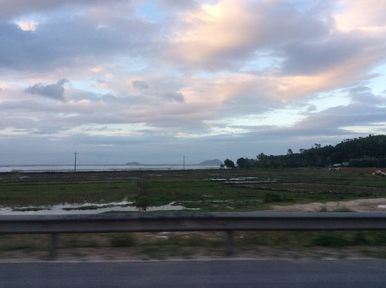 HVG Travel: Driving past paddy fields