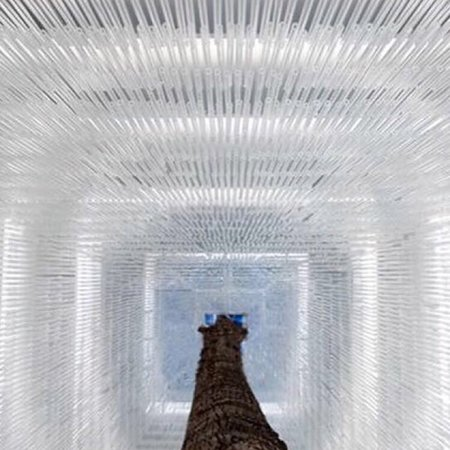 The 2018 tree : 15.000 glass straws : Magic