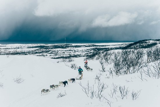 Arctic Ilo: Dogsledding With Our Siberian Huskies