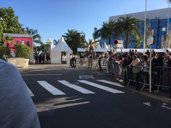 France : Канский кинофестиваль