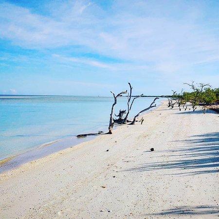 Holbox Island صورة فوتوغرافية