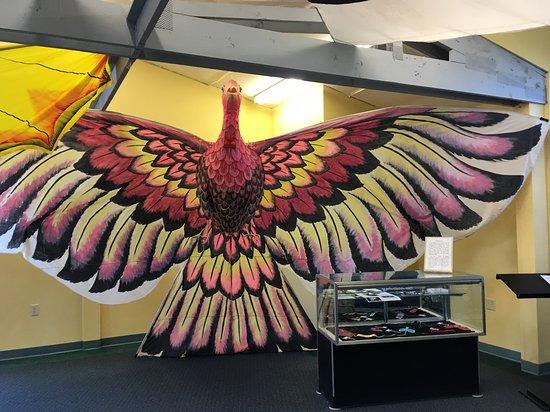 World Kite Museum & Hall of Fame-billede