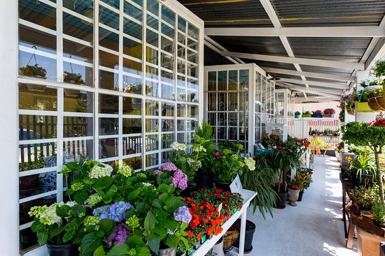 Bridge House: Garden Centre