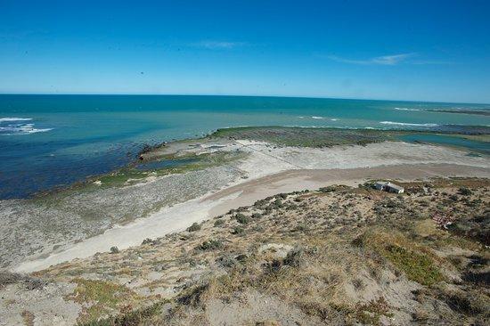 Tangol Puerto Madryn