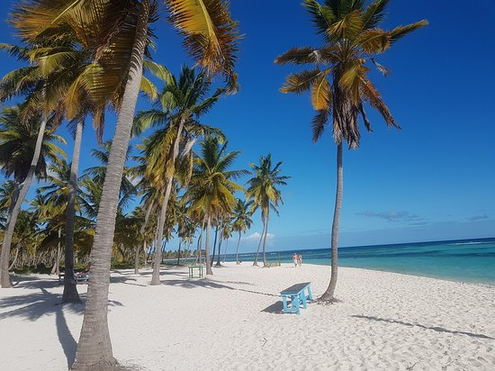 Isla Saona, Dominikanische Republik: CON ITALCRUISE ESCURSIONE ALL'ISOLA DI SAONA SIAMO AL CANTO DE LA PLAYA LA SPIAGGIA PIU' BELLA