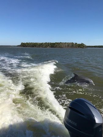 Everglades National Park Boat Tours Photo