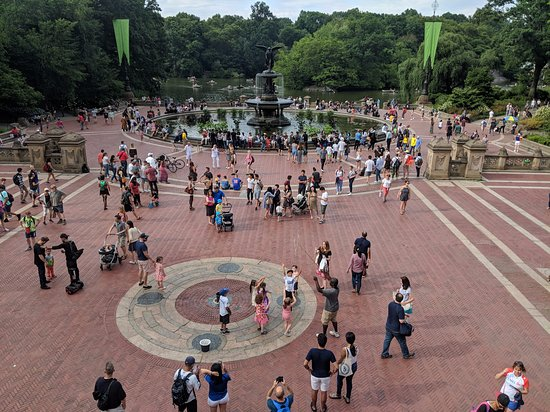 There's a lot happening at Central Park. Always.