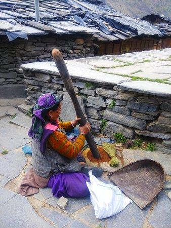 Woods Chanshal: nearby village