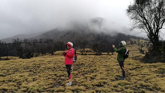 Conocer las faldas del humeante Volcán Turrialba es toda una experiencia, podrás apreciar cómo cambia el paisaje conforme se asciende