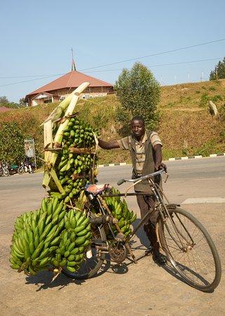 Transport von Bananen