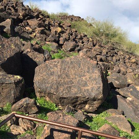 Deer Valley Petroglyph Preserve: Petroglyph