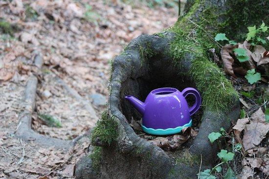 Teapot Hill