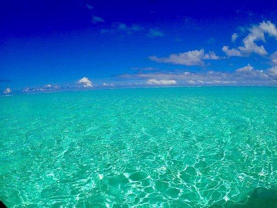 A fantastic day with pure snorkeling in Bora Bora.