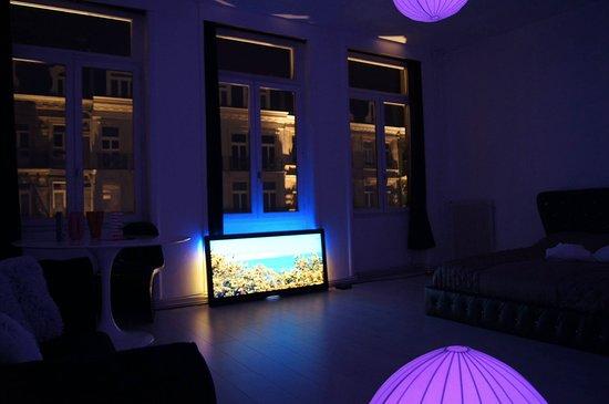 Studio Zen Concept