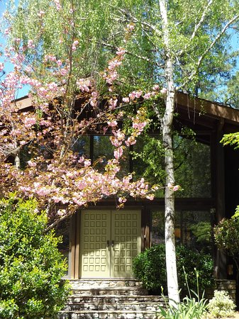 Front Door in spring time