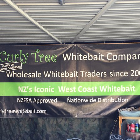 Curly Tree was on our list of stops while travelling through NZ if you love white bait this is the place to stop fresh and made in front of you.