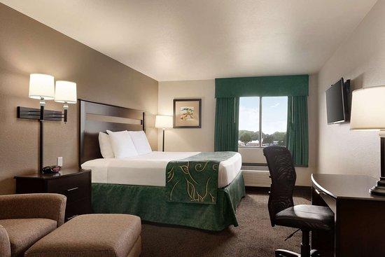 Wellington, KS: Guest room