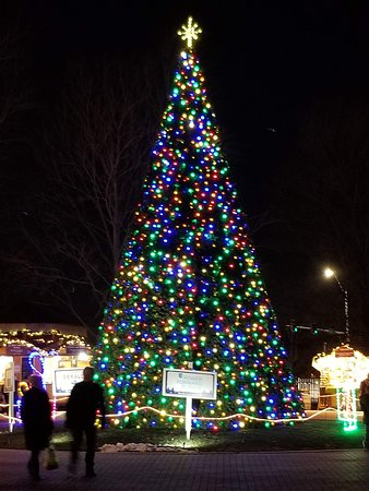 Naper Settlement : The Christmas Tree is the centerpiece