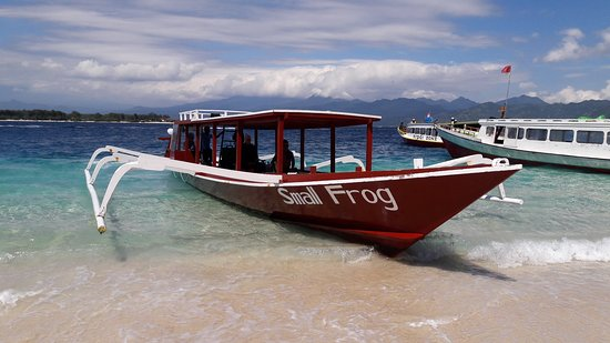 Our small Frog will take you around Gili islands!