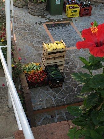 Nerano, Italië: The chef's morning purchases at the outstanding Michelin starred restaurant Quattro Passi near the Amalfi Coast.