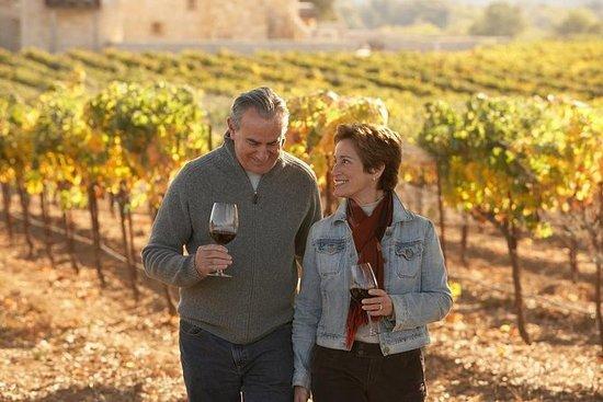 Tour di degustazione del vino veneto