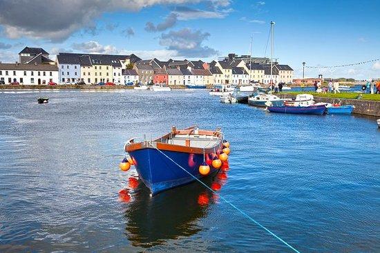 Viaje en tren a Connemara y la bahía...
