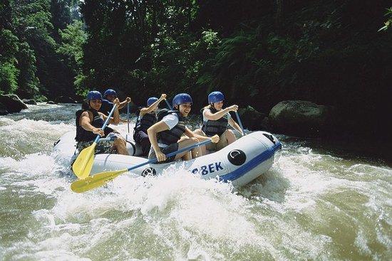 Aventura de rafting na selva branca...