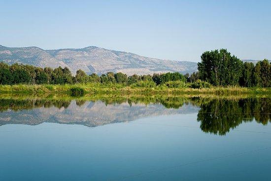 Une journée dans les monts du Golan...