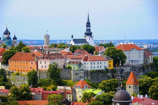 Tallinn Sightseeing Tour med bus og...