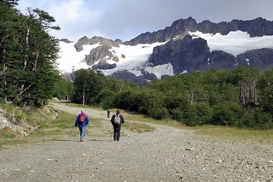 Tierra del Fuego National Park Hike...
