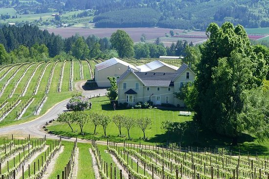 Willamette Valley Weinprobe Tour von ...
